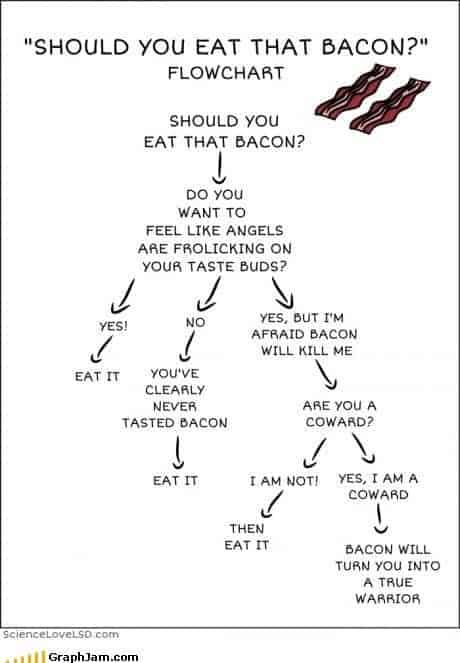 Bacon A Decision
