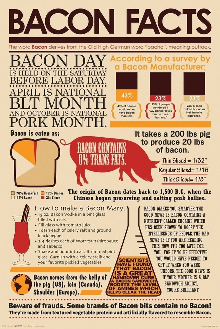 Bacon Wrapped Bacon